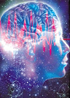 Можно ли жить без мозга?