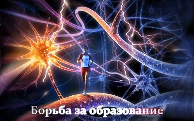 Борьба за Образование [2011 г., Информационный]