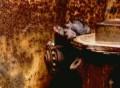 Тайны века. Меньшие братья по оружию (2004) DVDRip