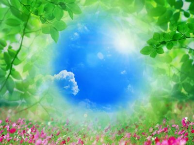 Как жить по Совести и в ладу с Природой