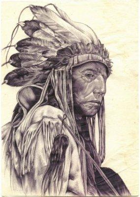 Высказывания вождей североамериканских индейцев
