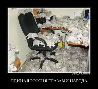 Памятка гражданину РФ