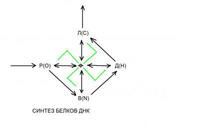 Русский алфавит как теория живых систем