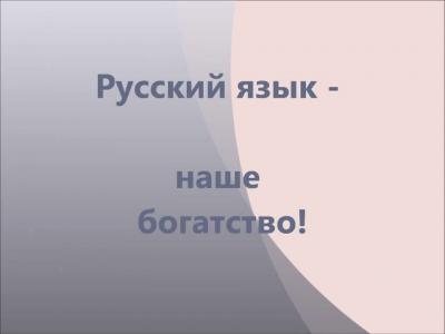 В.А.Чудинов. Почему в школе не любят русский язык