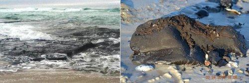 Метастазы Мексиканского залива. Часть 13-2