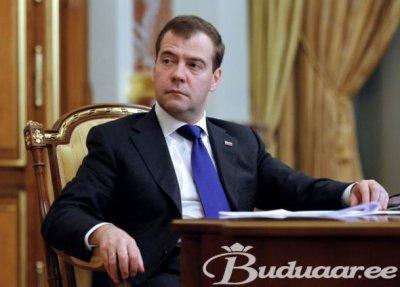 Медведев вырубил березовые рощи в угоду сыну