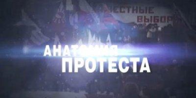 Анатомия протеста - 3 (ЧП. Расследование)