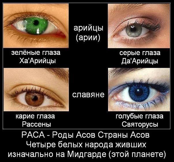 У славян цвет глаз