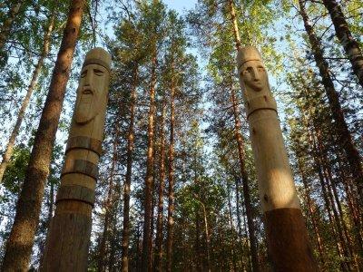 Душа лесов