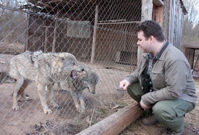 Интервью с вожаком волчьей стаи