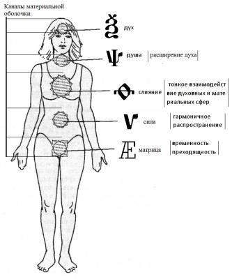 Устройство человеческого «Я»
