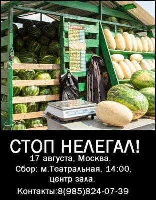 Русский мужик и нелегал. Русская зачистка (7 августа 2013 г., Москва)