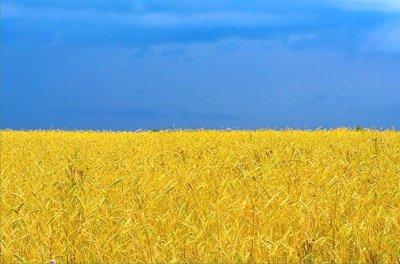 Небесный цвет на флаге Родины моей