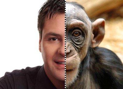 От человека к обезьяне. Краткое исследование либерального проекта
