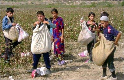 Ресурсная федерация - кормовая ферма Узбекистана