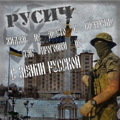 Славяне и война за Новороссию. Кто и почему выбрал свой путь борьбы?