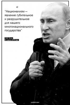 О логике администратора банановой России