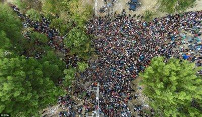 Мигранты штурмуют европейские границы и устраивают беспорядки в тех странах куда им удалось попасть