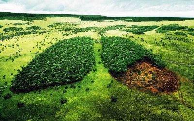 Экология сознания современного человека (Анонс эфира 15 ноября 2015 года в 20:00 по МСК)