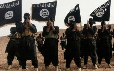 Мнение Рахимера: Игиловцы=душмане, Сирия=Афган и налог на тунеядство