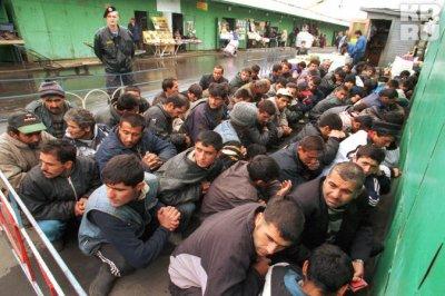 Путин объявит новую амнистию для мигрантов из средней азии