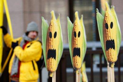 ГМО-продукты начали убивать европейцев.