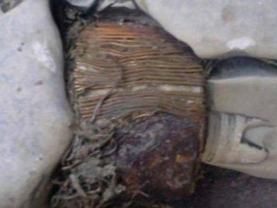 В Косово нашли трансформатор которому 20 000 лет
