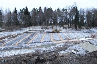 В усадьбе «Монрепо» вырубили около 3000 деревьев в «санитарных» целях