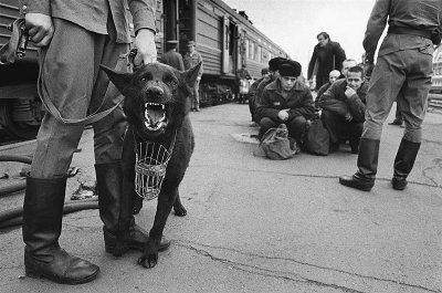 Скрытая сеть платных частных тюрем в России