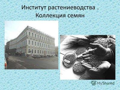 """Скандал Судного дня: в России """"разоблачили"""" продовольственный заговор"""