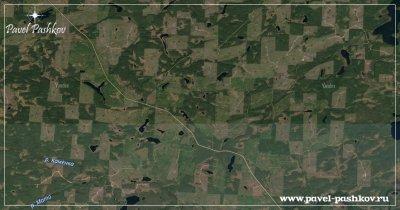 Проблема вырубки леса в Карелии