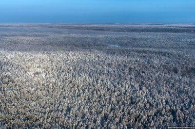 Китайцы в Сибири: Сибирь китайская земля