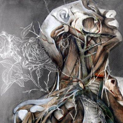 Связь характера человека и заболеваний тела