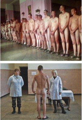 Анатомия феминизма