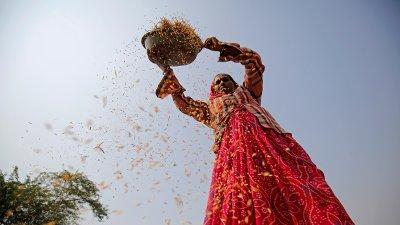 В Индии будут раздавать деньги бедным