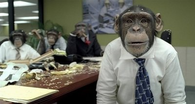 Деньги растлили даже общество приматов...