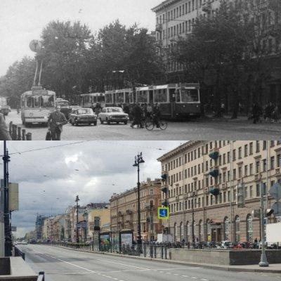 Как в Санкт-Петербурге за 30 лет исчезли деревья