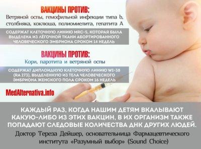 Некоторые из вакцин содержат человеческий абортированный материал
