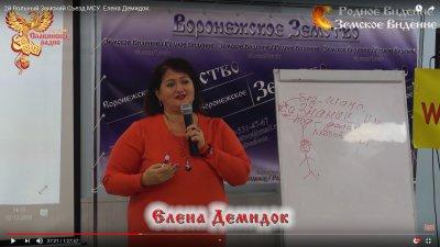2й Вольный Земский Съезд МСУ. Елена Демидок.