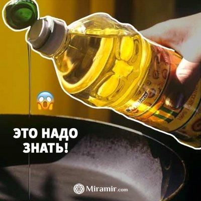 Как делают рафинированное подсолнечное масло. Только факты