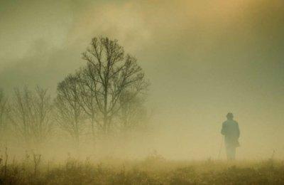 Как тишина влияет на человека