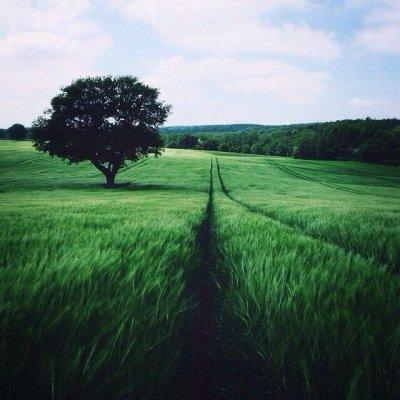 20 законов мироздания. Как изменить судьбу