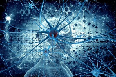 Ткани человека обладают интеллектом, памятью и эмоциями