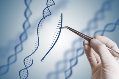 ГМО человечество близко?
