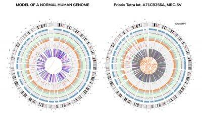 Итальянские ученые выявили в вакцине 560 раковых генов