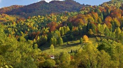 Отдых и санаторно-курортное лечение в Закарпатье