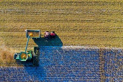 Поставщик зерноочистительного оборудования