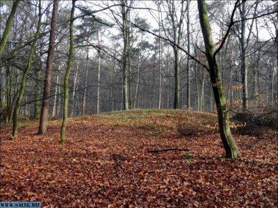 Голландские археологи установили что в местности с славянским названием Велюв возможно жили русские
