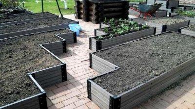 Ленивые грядки: решение проблем садовода
