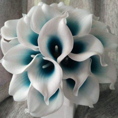 Цветы, которые порадуют вас дольше
